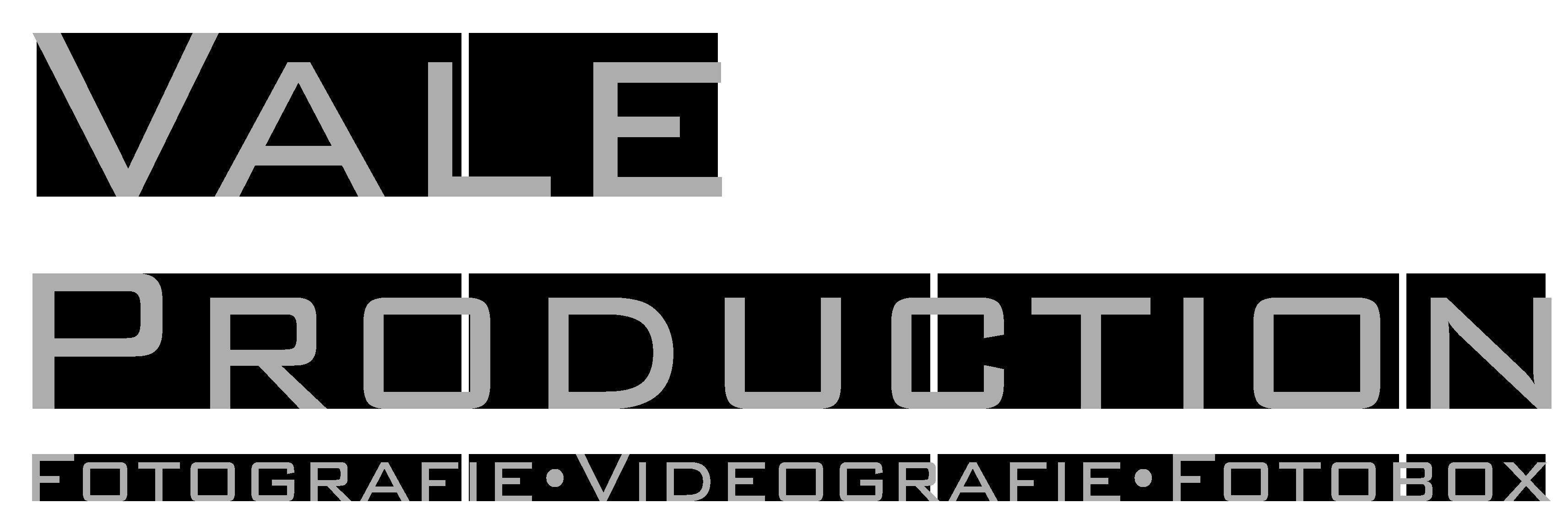Logo_grau_-neu